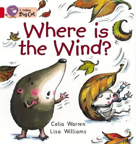 Where is the Wind?