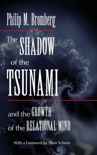 Shadow of the Tsunami