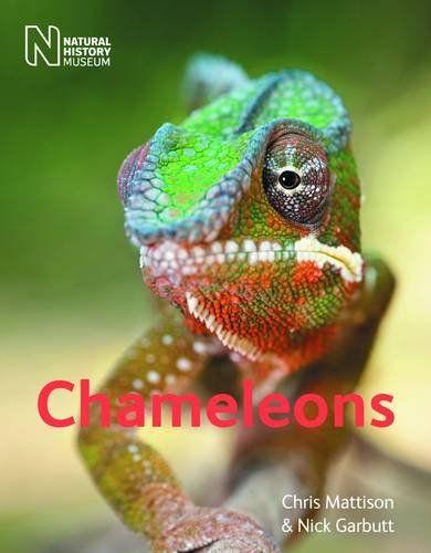 9780565092900 image Chameleons