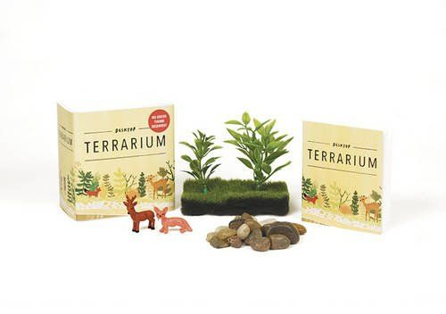 Desktop Terrarium