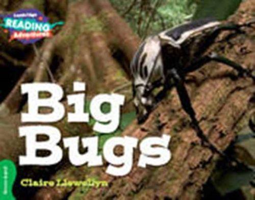 Big Bugs Green Band