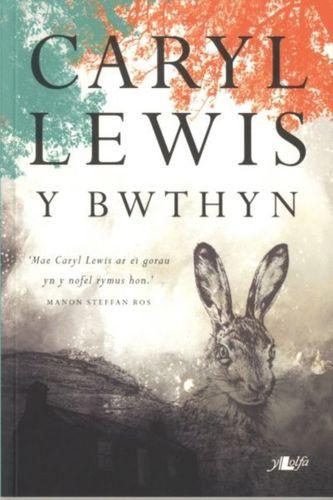 Bwthyn, Y