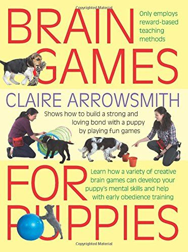Brain Games for Puppies